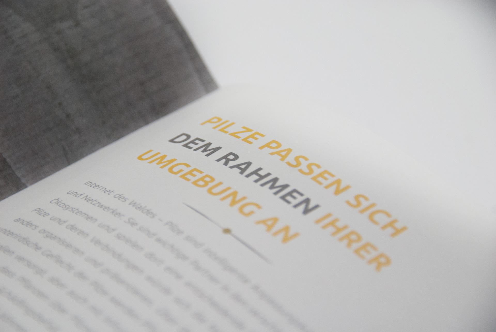 Paljari Broschüre Blindprägung